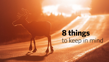 8 things to keep in mind